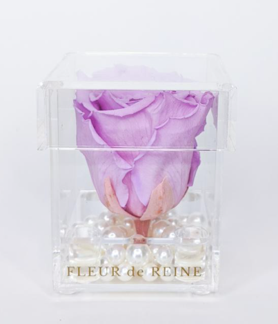 Mini EternalBloom Rose