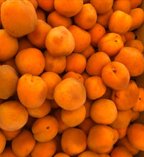 Load image into Gallery viewer, Addy's Apricot, Lemon, Vanilla Bean Jam limited batched