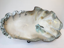 Load image into Gallery viewer, Oyster Shell Bakers