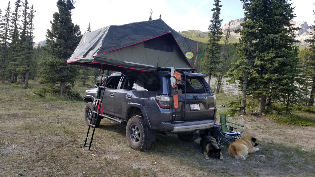 3 Person Ruggedized Roof Top Tent USD Pricing - Off Grid Trek