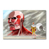 Poster Toile One Punch Man Saitama vs Monstre Attaque des Titans AOT