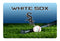 Chicago White Sox Pet Bowl Mat Classic Baseball Team Color Size Large