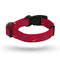 St. Louis Cardinals Pet Collar Size L