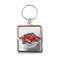 Arkansas Razorbacks Pet Collar Charm