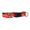 Kansas City Chiefs Pet Collar Size S