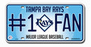 Tampa Bay Rays License Plate