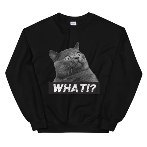 funny cat sweatshirts - black a Surprised Cat WHAT