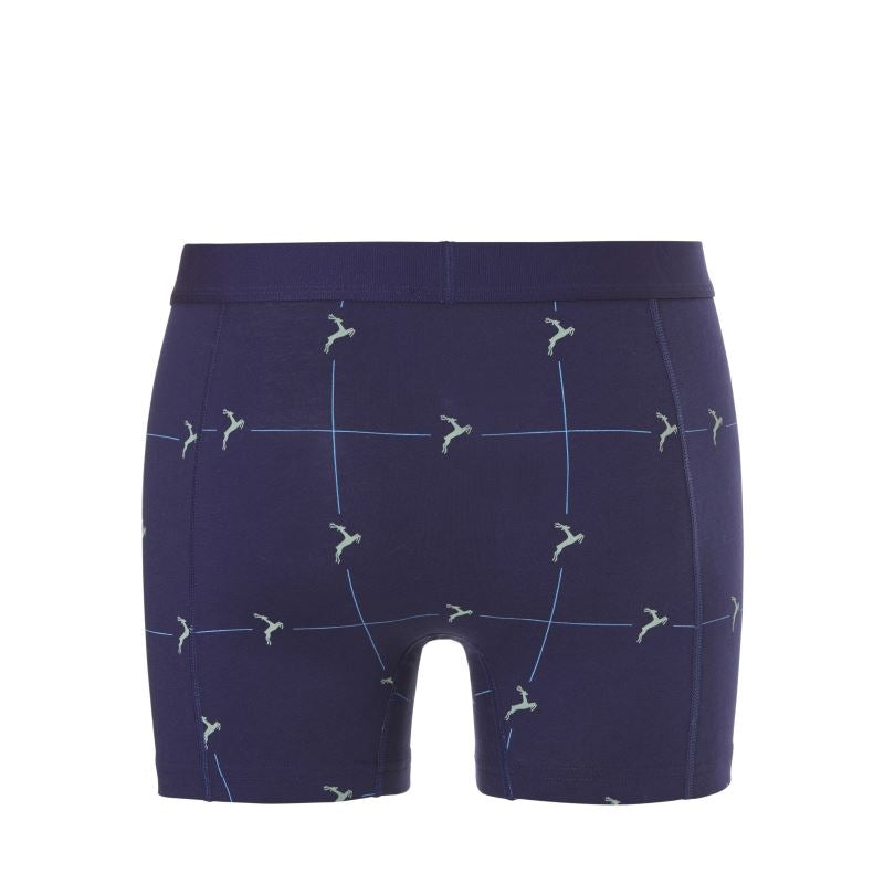 30307 Ten Cate Fine Shorts Flash 2-pack - blauw/groen