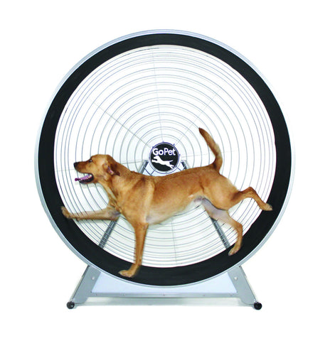 GOPET CS6020 INDOOR/OUTDOOR TREADWHEEL FOR MEDIUM AND SMALL DOGS - Pet Possibilities - 1