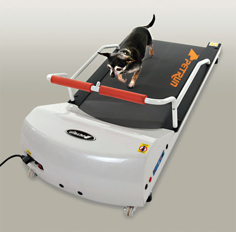 GOPET PETRUN PR700 TREADMILL FOR SMALL DOGS - Pet Possibilities