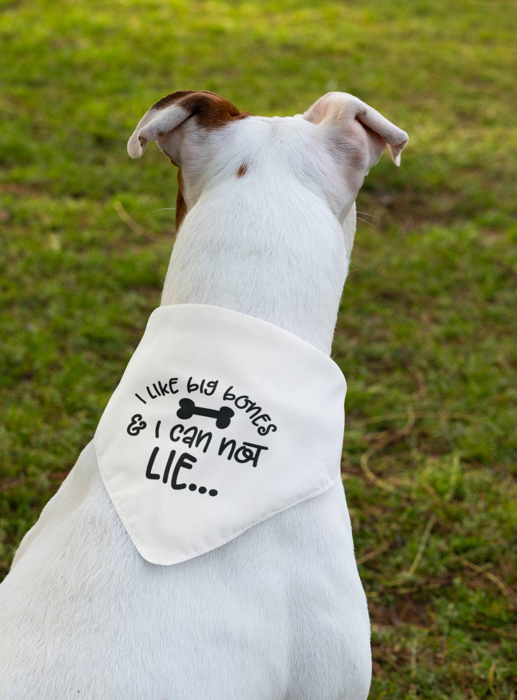 Dog Bandana, I like big bones and I cannot lie - So Swag Apparel