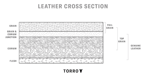 Leather Cross Section Illustration