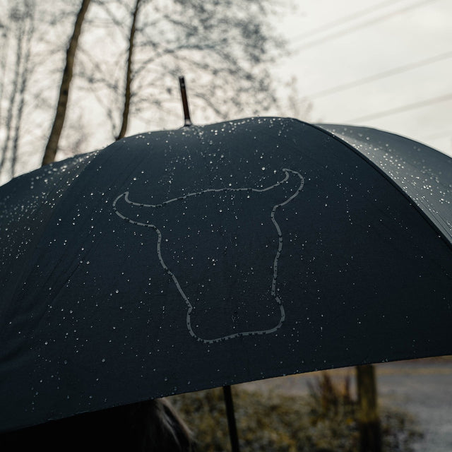 Open umbrella in the rain with TORRO branding