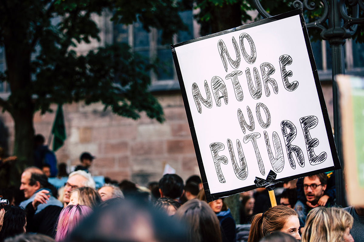 Climate crisis protest sign - No Nature, No Future.