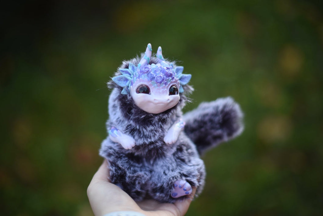 Baby Frida Dragon
