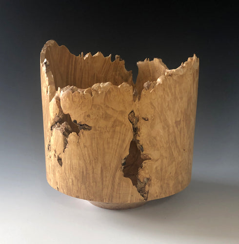 LARGE NATURAL-EDGE MAPLE BURL VESSEL