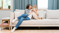 Best Tips for Using Soft Water to Clean Upholstery
