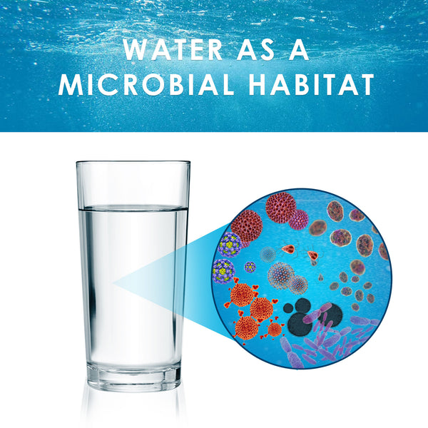 microbes in water