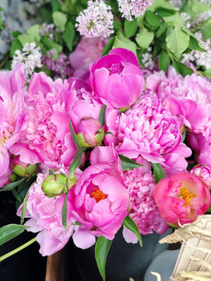 Peony Subscription