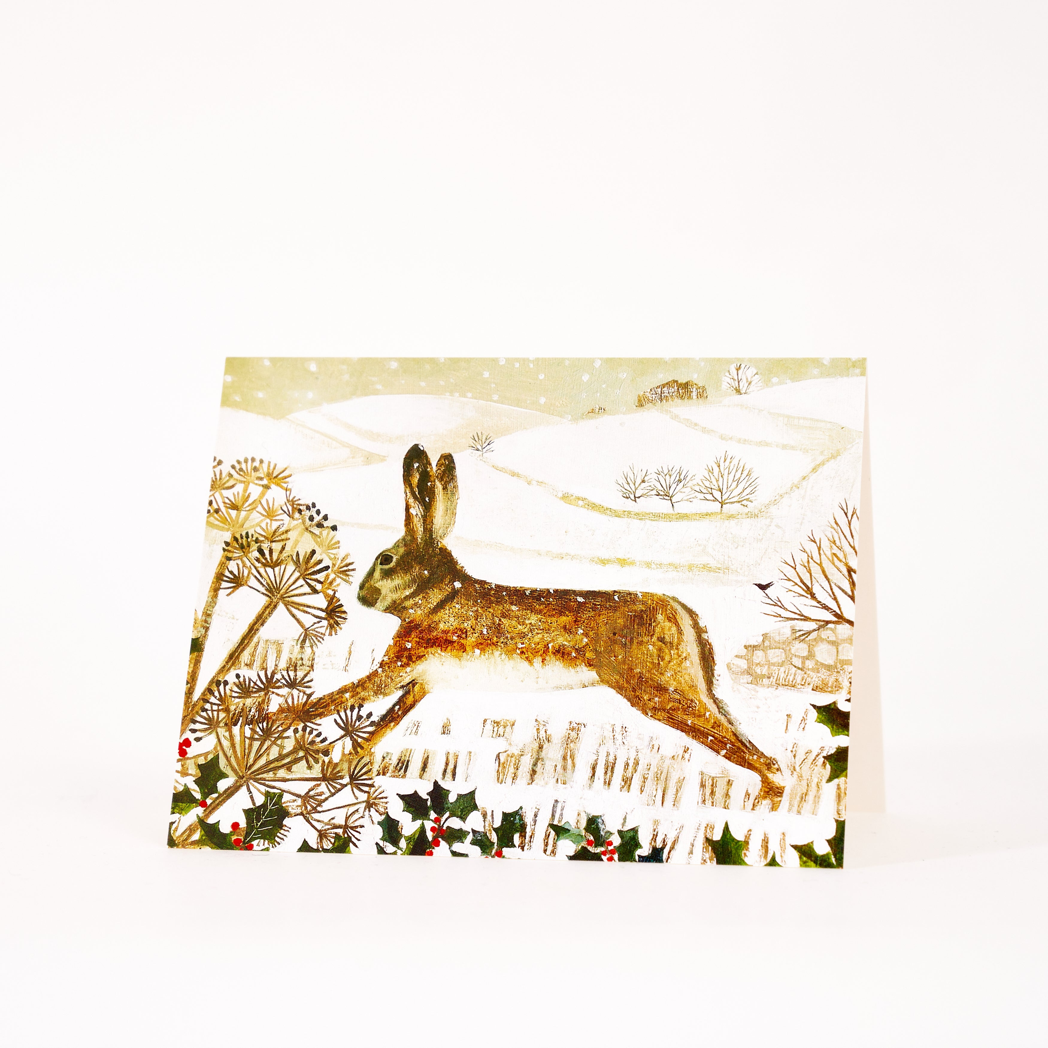 Hare, Holly & Hillside - Pack of 5 Christmas Cards