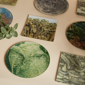 "7 1/2"" Tropical Foliage Decoupage Plate"