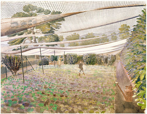 Strawberry Nets by Eric Ravilious
