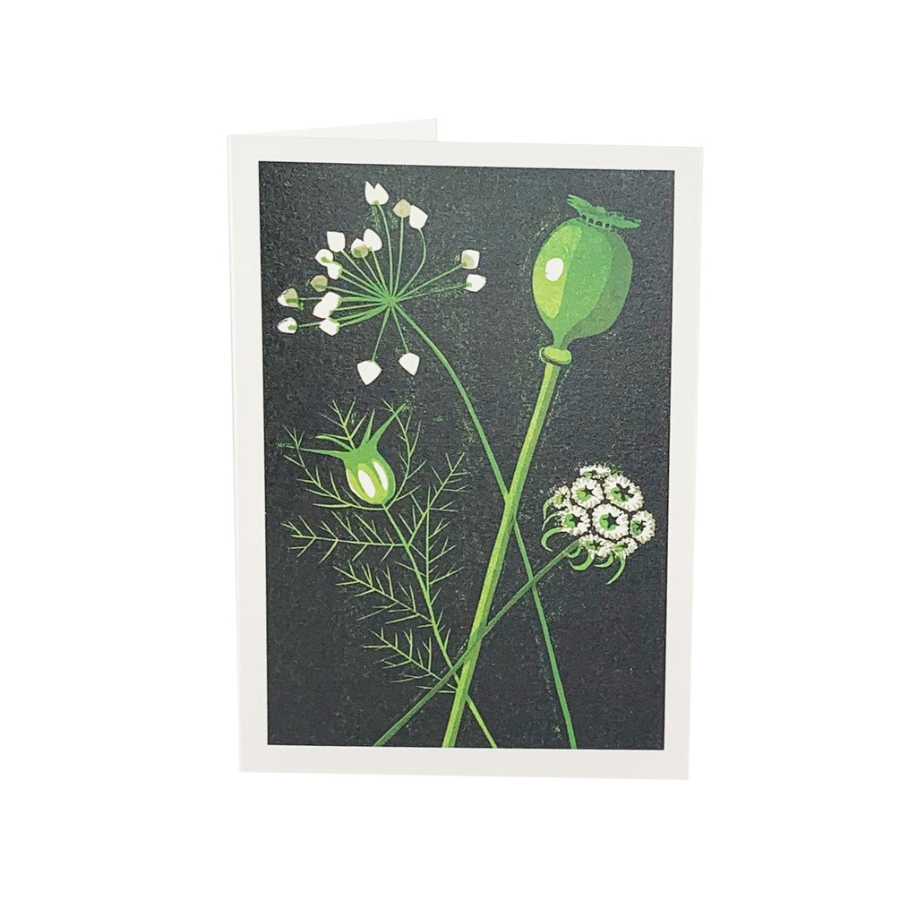 Seed Heads Greeting Card