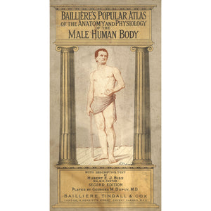 Cover of Baillieres Popular Atlas of the Anatomy and Physiology of the Male Human Body