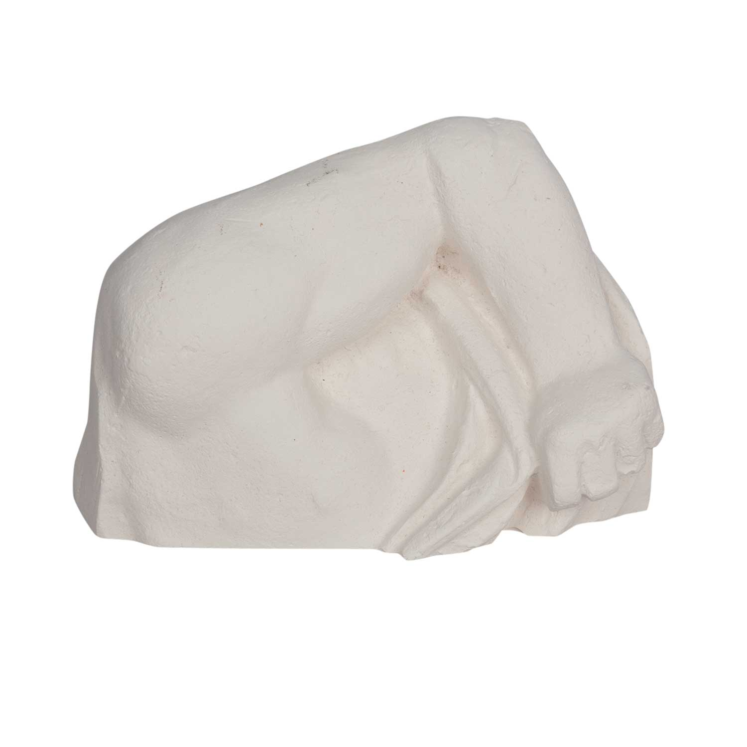 Plaster cast body part - Large