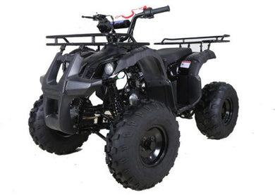 Hawkmoto Force Kids Quad Bike 125Cc  Black
