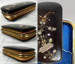 Antique French Tortoise Shell & Pique Cigar or Spectacles Case, Etui, Leather Baffled Sides to Expand, use as Evening Bag