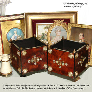 PAIR of Antique French Napoleon III Plant Boxes or Jardinieres, Burled, Mo Pearl