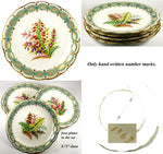 "Antique 4pc Hand Painted 8 3/4"" Cabinet Plate Set, Flowers with Turquoise & Gold"