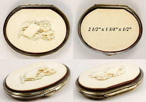 Antique Coin Purse, Napoleon III (c.1850-70) French, Charming and Excellent Condition