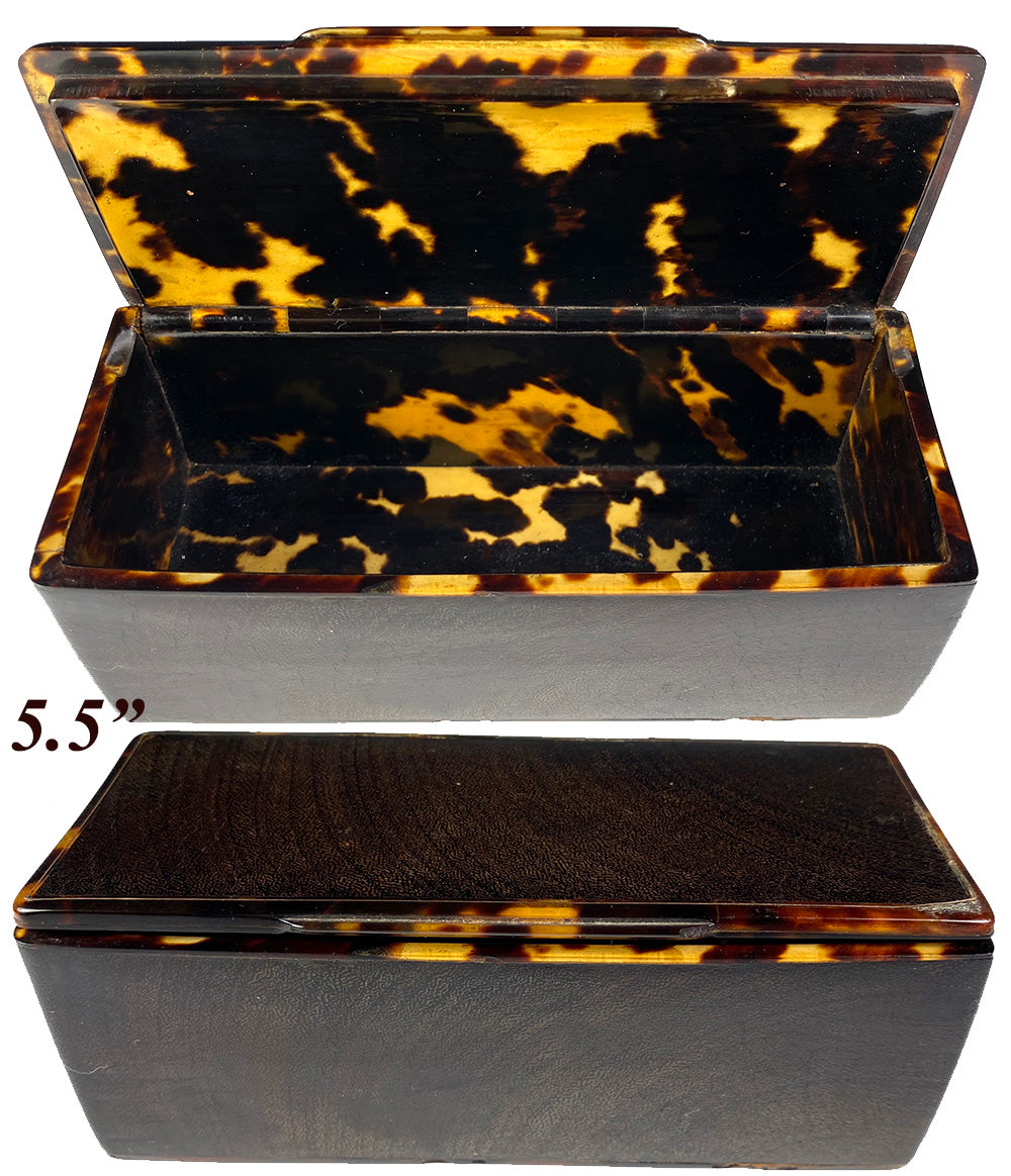 "RARE Large Antique French Table Snuff or Jewelry Box, Casket, 18k Gold Stringing and 5.5"" Long"