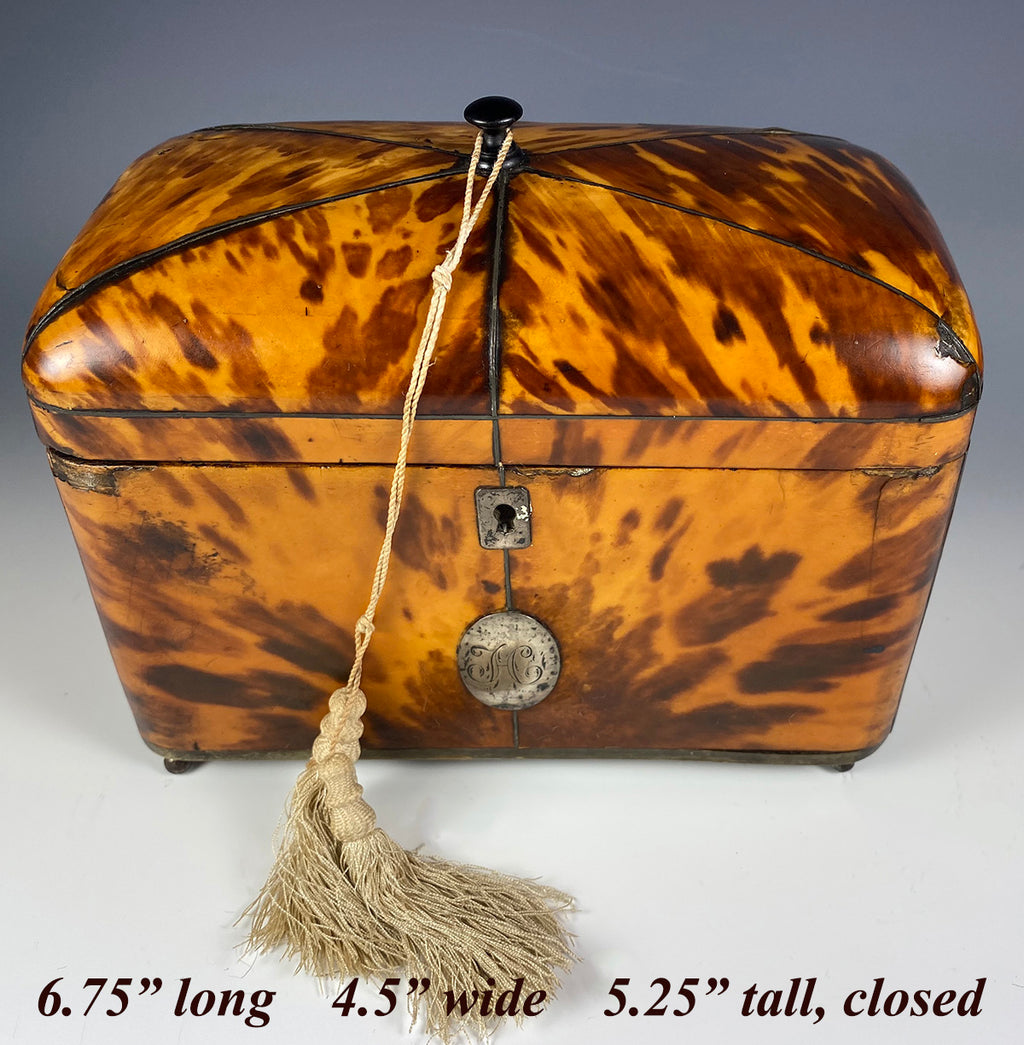 "Superb Georgian (1770s) English Tortoise Shell Tea Caddy, Tortoiseshell, 6.75"" Long"