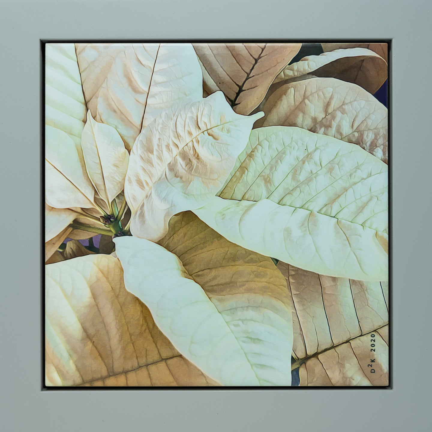 Framed Ceramic Photo Tile - White Poinsettia