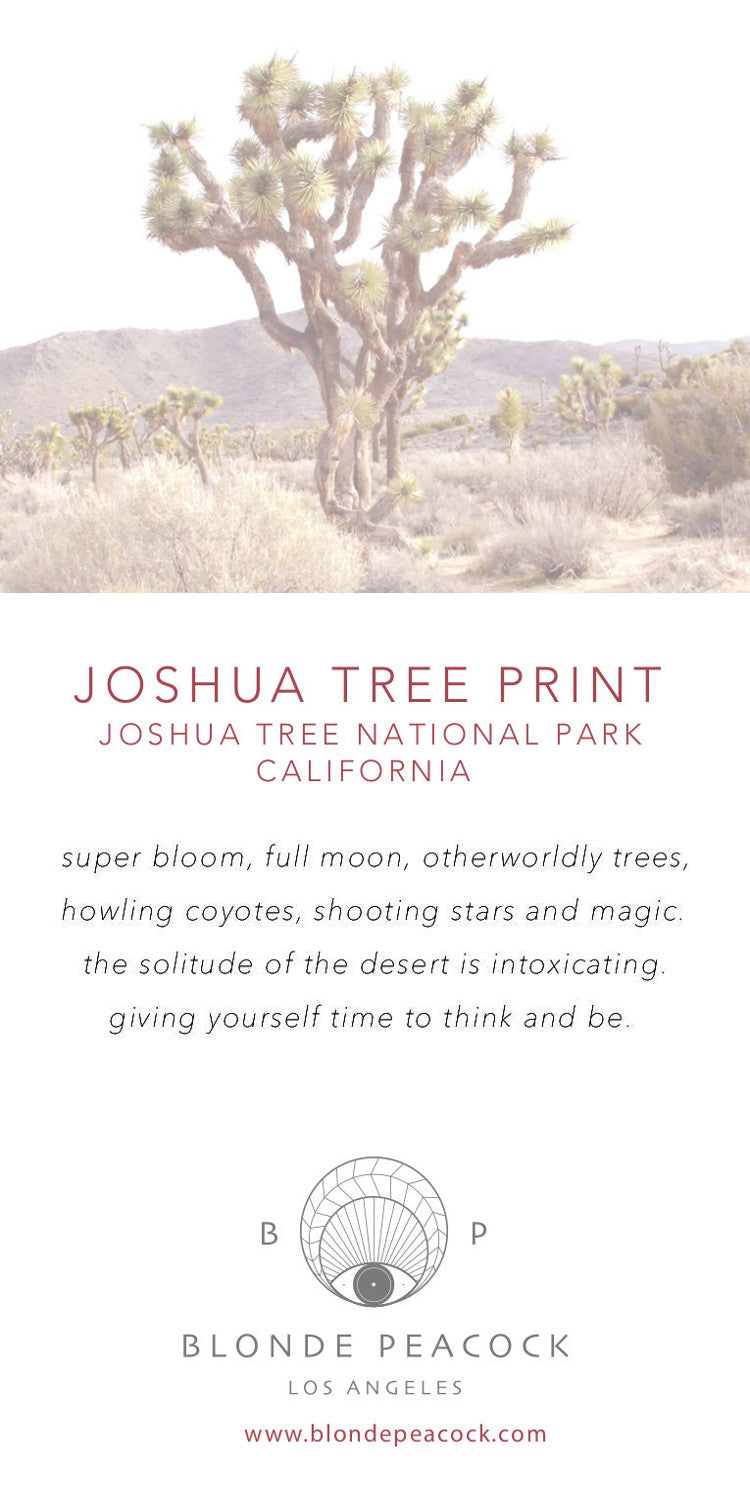 JOSHUA TREE PRINT Unisex Tee-Wholesale