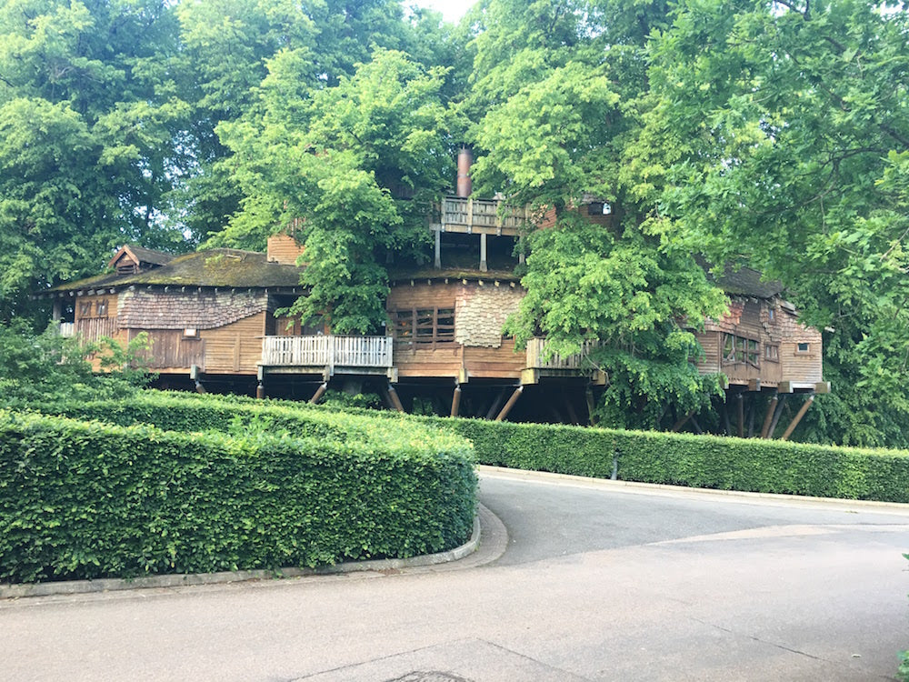 Things to do in Alnwick - Treehouse Restaurant