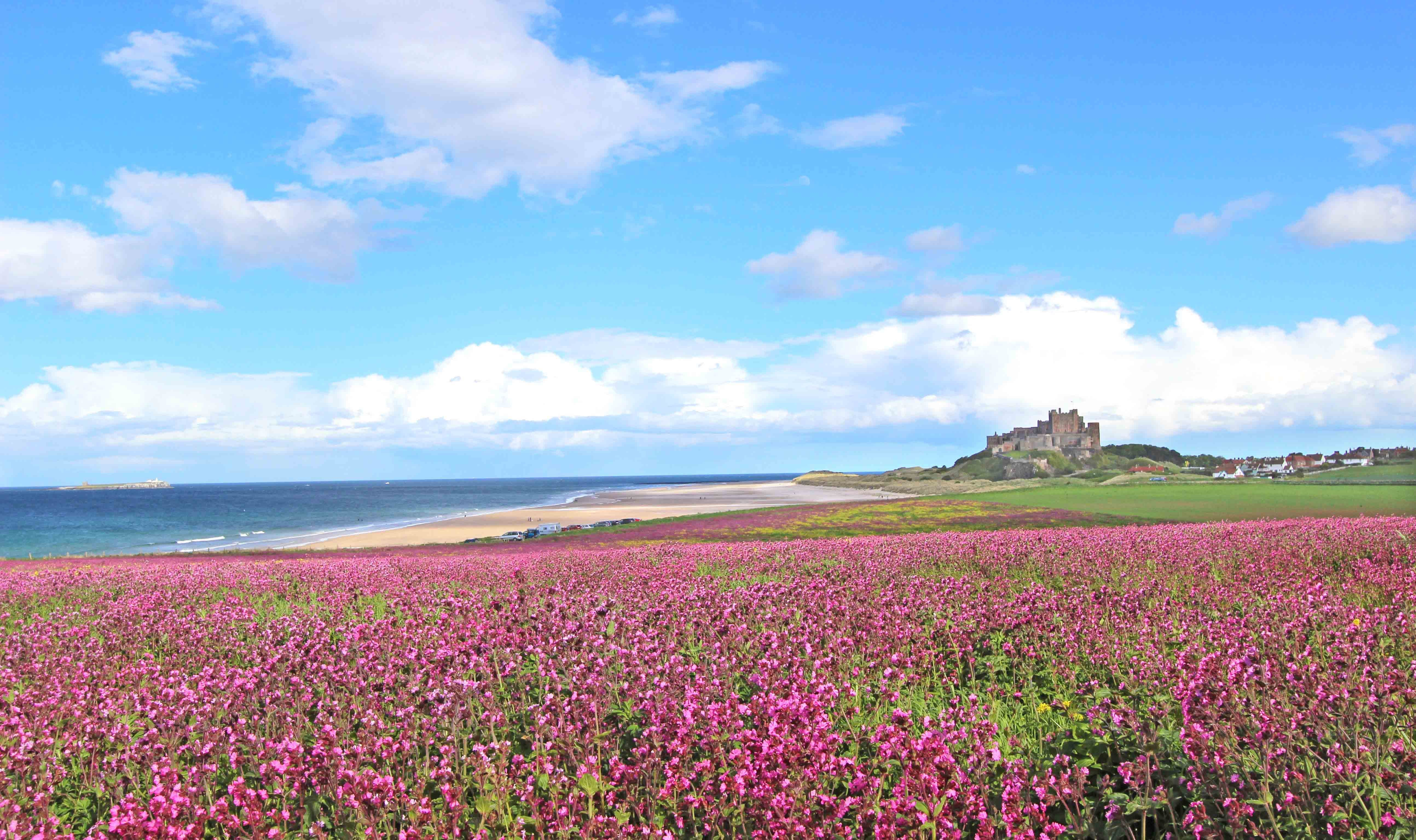 3 Action-Packed Things to do in Northumberland - Cottages in Northumberland