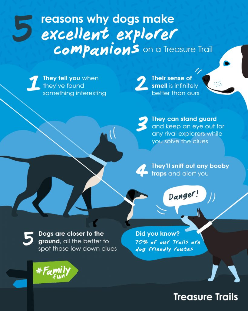 5 reasons why dogs make excellent Trail explorers