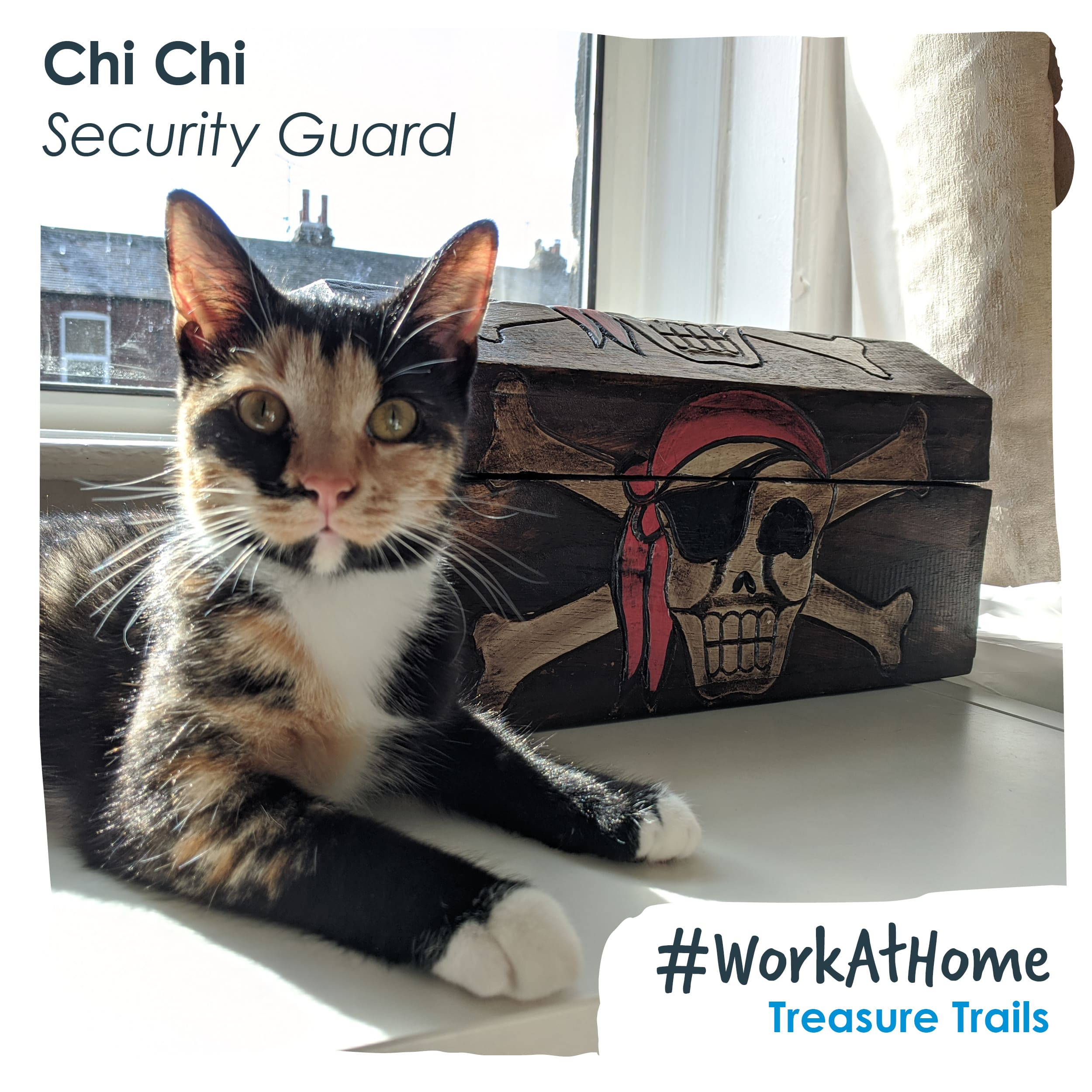 Chi Chi Guarding the Treasure | Little Lockdown Lessons: Embracing What We've Learnt