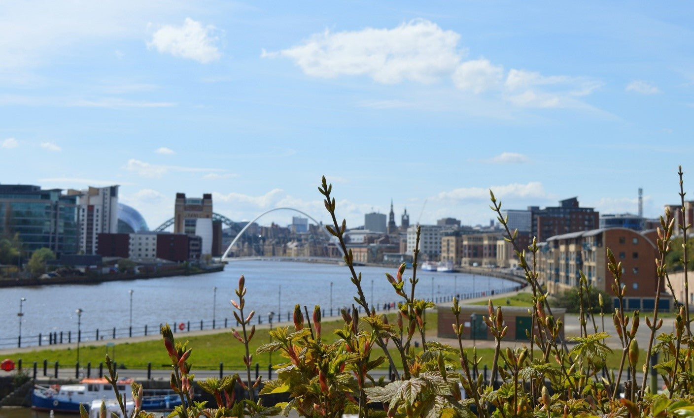 5 Family-Friendly Activities in Newcastle upon Tyne
