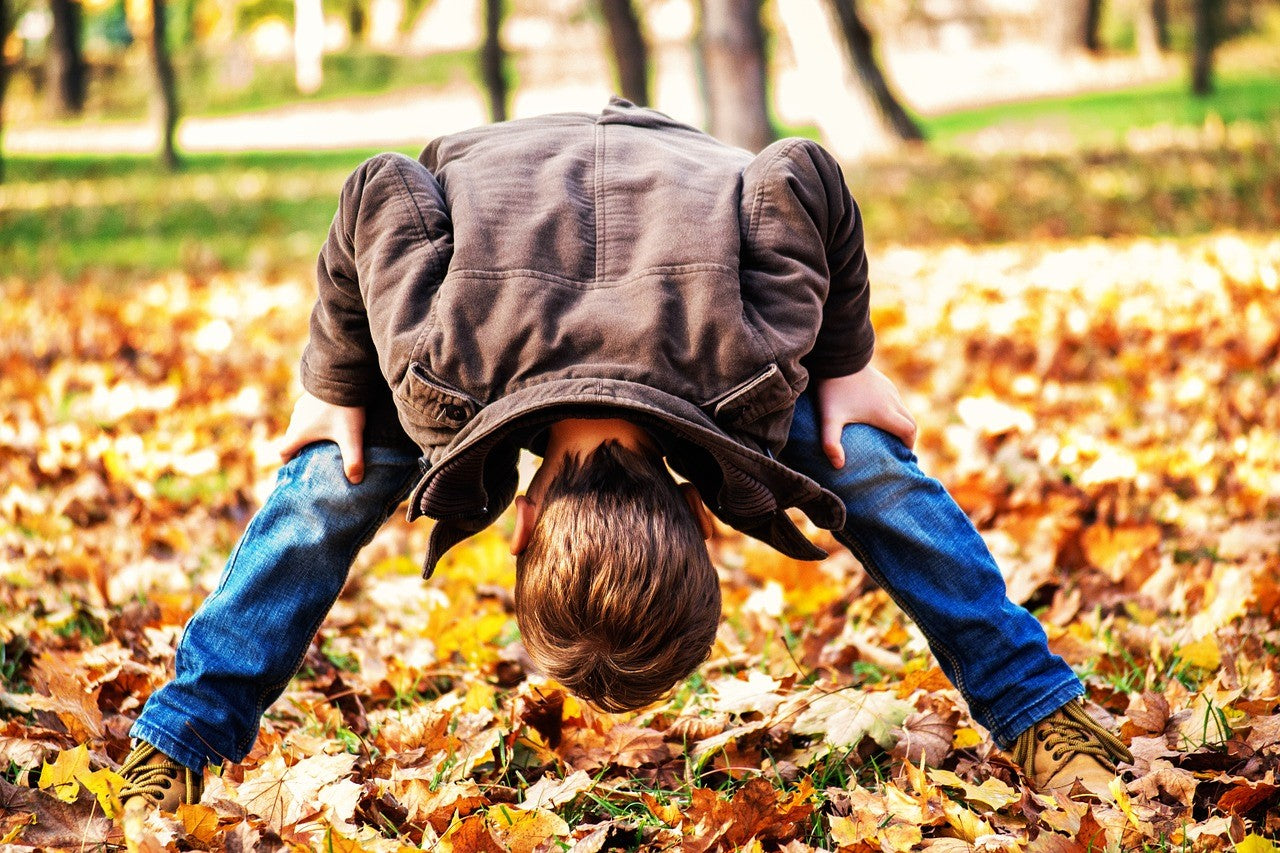5 Family-Friendly Activities in Newcastle upon Tyne - Get close to nature...