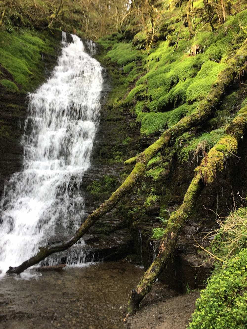 Things to do in Mid Wales - Water Breaks Its Neck