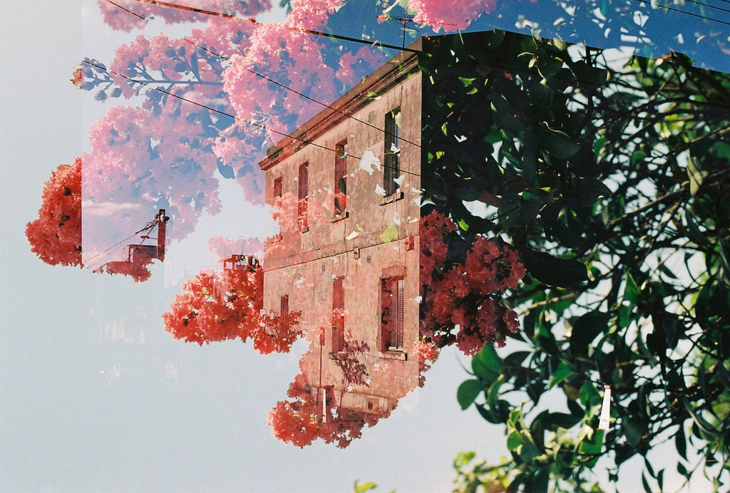 """A double exposure picture showing an old building covered in beautiful red & green flowers, plants & trees"". Vintage photo, style Interior design, Pictures Abstract film photography, double exposure, green & red,"