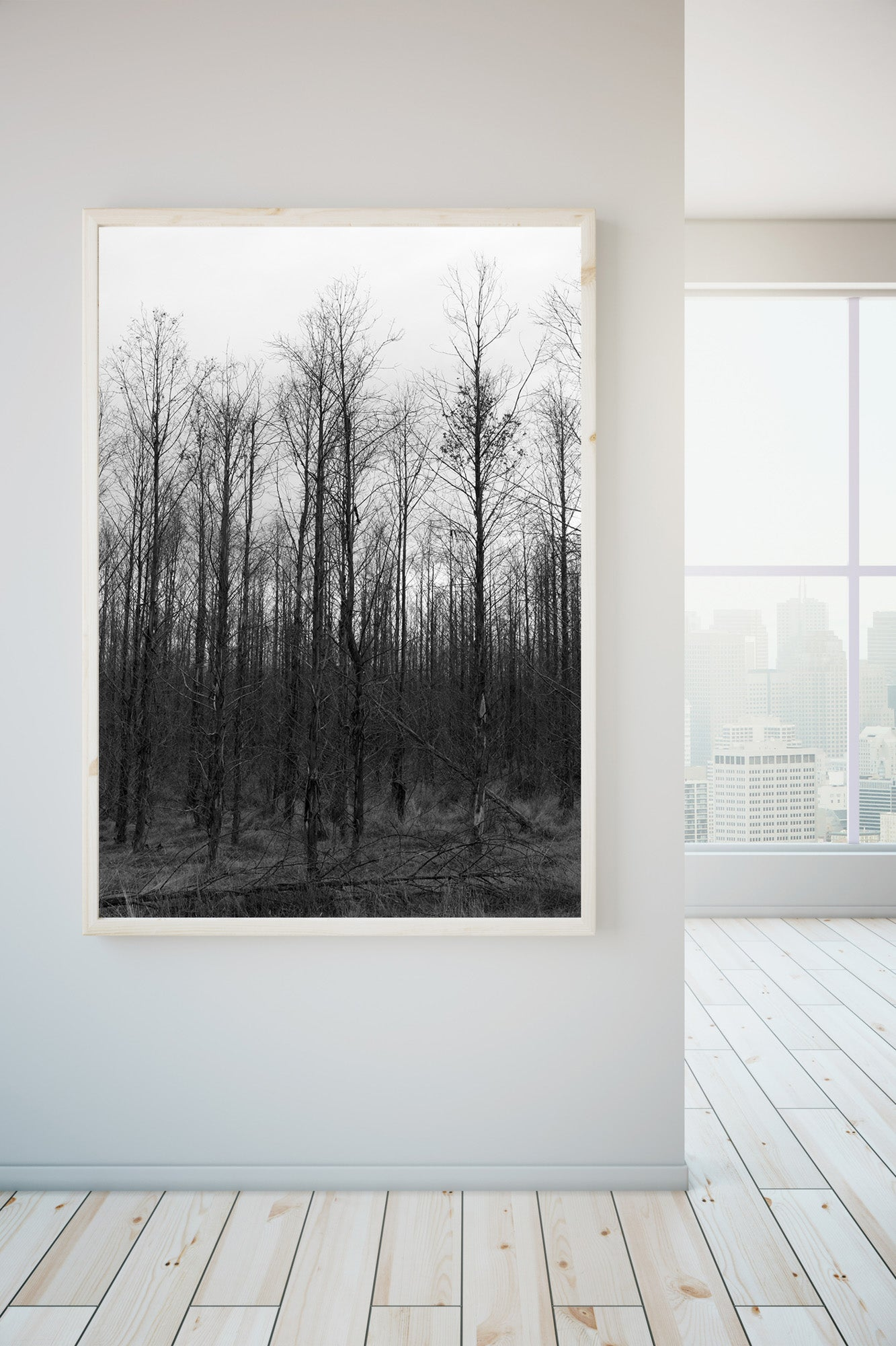 A photographic art gallery wall.A photograph of Birch trees in a forest. The sky is great & the trees are dark & bare. photography, summer, photography, Artwork Prints, wall art,  Photographic prints, summer, Framed artwork,  Australian, cradle mountain