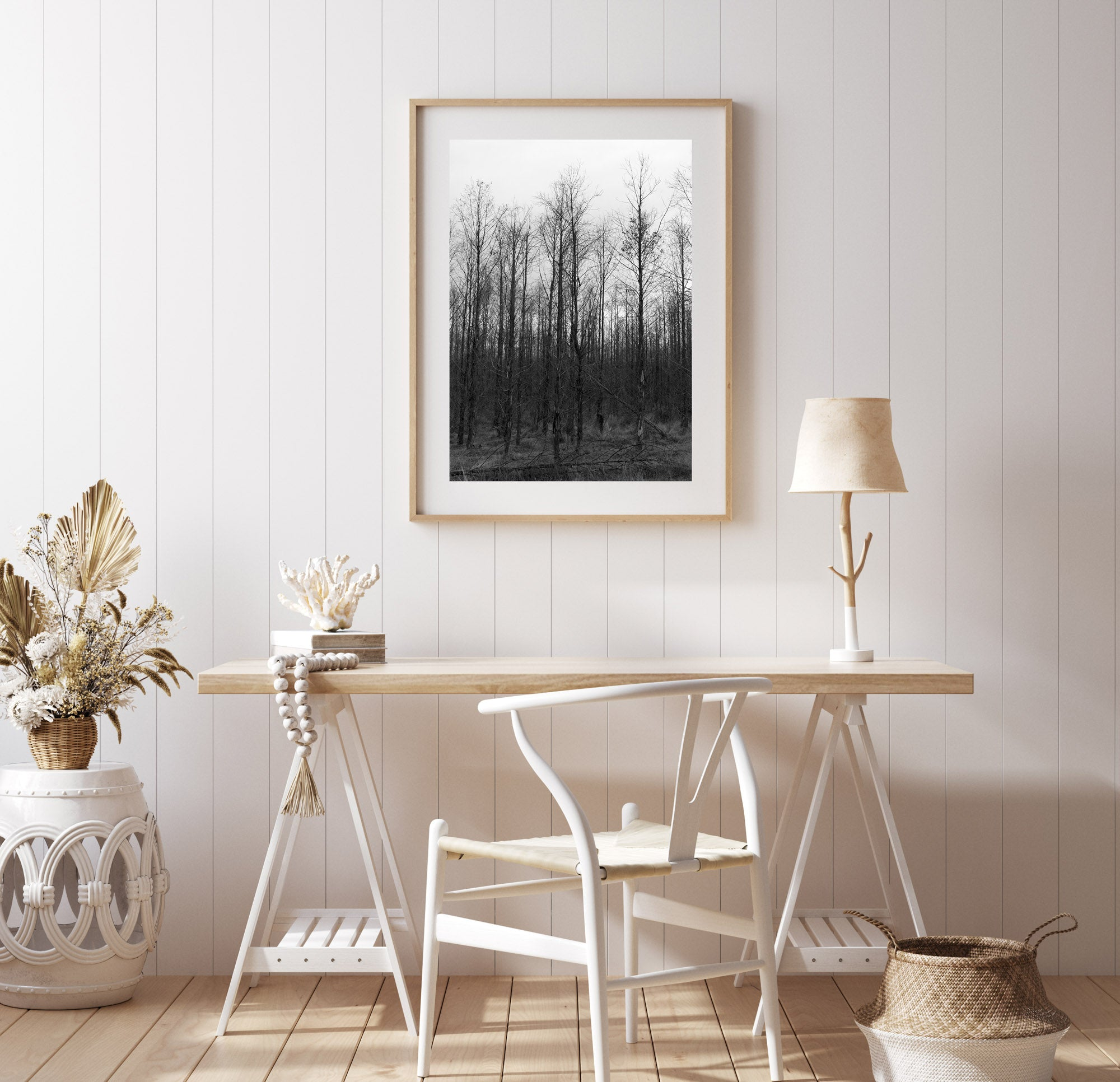 A photograph of Birch trees in a forest. The sky is great & the trees are dark & bare. photography, summer, photography, Artwork Prints, wall art,  Photographic prints, summer, Framed artwork,  Australian  Photography, wall art, beach prints, coastal prints, Tasmania, cradle mountain, Film photography, Vintage photo, style  Interior design, Pictures for sale, film photography, photography art, Hobart, nature,