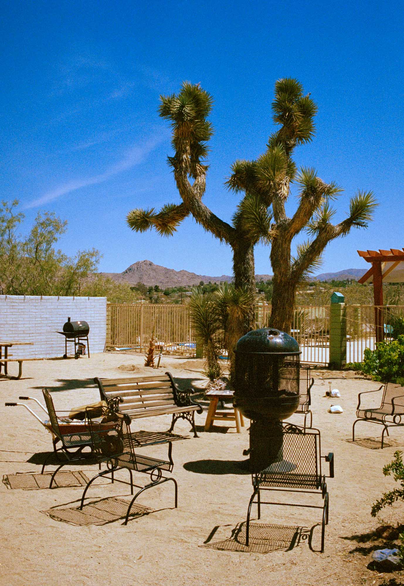 A photographic print of the joshua treem motel california, swimimg pool at joshua tree's Artwork, Prints wall art California Photographic prints Ocean Palm Springs Framed artwork, Photography,  Film photography, Vintage photo style,  Interior design, beach, Buy Art, photography art, Joshua tree print, Joshua tree, buy art, Prints for sale, art prints, color photography
