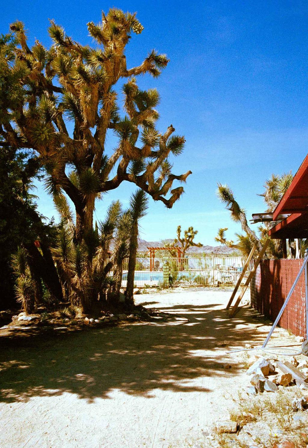 JOSHUA TREE MOTEL #2